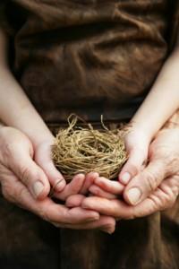 nest-hands-200x300